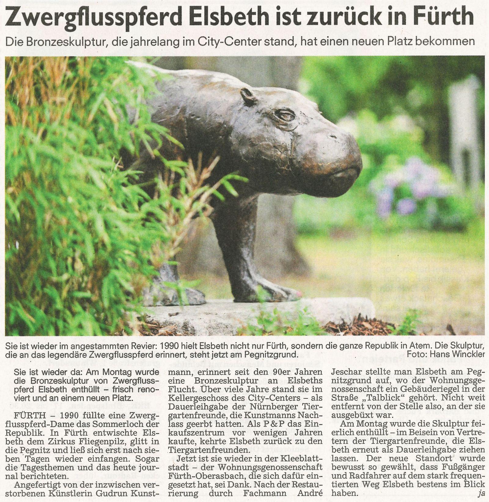 Zwergflusspferd Elsbeth ist zurück in Fürth …